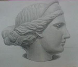Голова Венеры в профиль. Компановка на листе. Профильная линия. Положение уха. Формообразование поверхности щеки. Свето-тень.