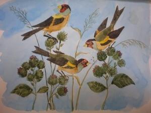 Рисунок птиц