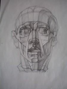 Мышцы лица. Анатомия мышц. Компановка на листе. Парное строение форм.